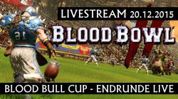Teaser Stream Endrunde Blood Bull Cup_640x360